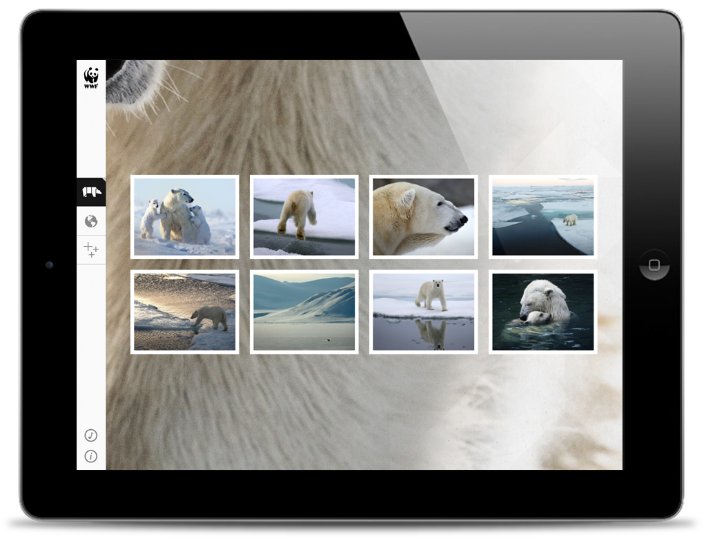 2-wwf-polar-gallery_o